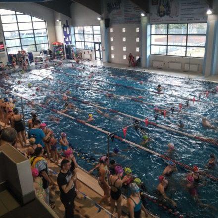Finały wojewódzkie w pływaniu indywidualnym i drużynowym
