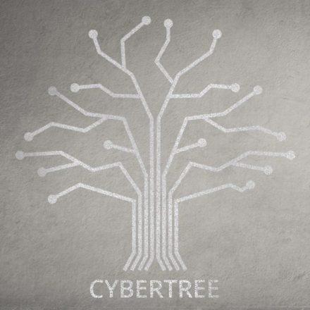 Szkoła programowania Cybertree