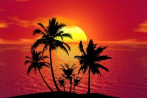 tropical-1651423_1280