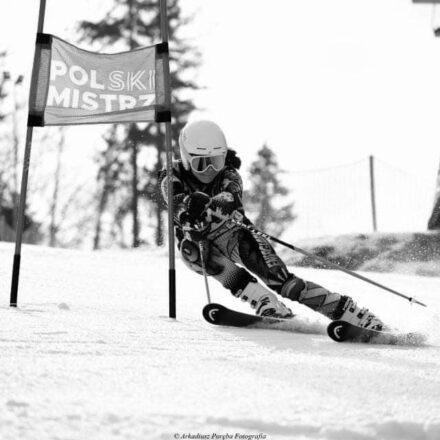 Zawody narciarstwa alpejskiego
